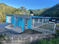 Homes for Sale in Morovis PR, Morovis, Puerto Rico $110,000