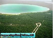 Other for Sale in Muyil, Tulum, Quintana Roo $250,000