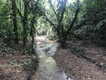 Lots and Land for Sale in Platanillo, Puntarenas $139,000