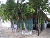 Homes for Sale in Paamul, Quintana Roo $99,900