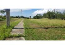 Lots and Land for Sale in CUESTA BLANCA, Lajas, Puerto Rico $167,000