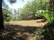 Farms and Acreages for Sale in Dominicalito, Puntarenas $179,000