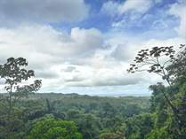Lots and Land for Sale in Osa, Puntarenas $200,000