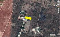 Lots and Land for Sale in Izamal, Yucatan $16,000