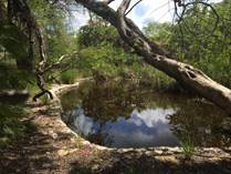 Lots and Land for Sale in Ruta de los Cenotes, Puerto Morelos, Quintana Roo $3,500,000