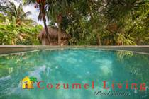 Homes for Sale in Huertos Familiares, Quintana Roo $570,000