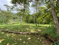 Lots and Land for Sale in Uvita, Puntarenas $450,000