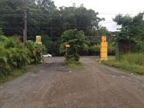 Lots and Land for Sale in Quebrada Ganado, Puntarenas $500,000
