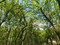 Lots and Land for Sale in Bagaces, Guanacaste $14,000