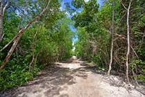 Lots and Land for Sale in Tulum, Quintana Roo $4,337,086