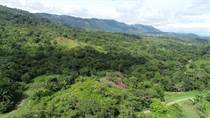 Lots and Land for Sale in Cortez, Puntarenas $32,999