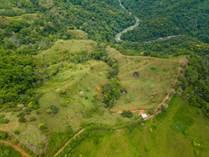 Farms and Acreages for Sale in Finca Cacao, Platanillo, Puntarenas $600,000
