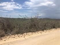 Lots and Land for Sale in Cerritos , La Paz, Baja California Sur $90,000