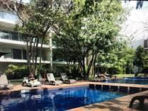 Homes for Sale in Playacar Phase 2, Playa del Carmen, Quintana Roo $6,600,000