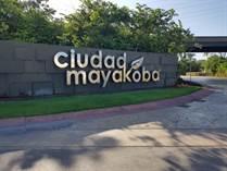 Homes for Sale in Ciudad mayakoba, Playa del Carmen, Quintana Roo $1,350,000