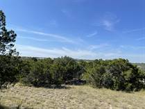 Lots and Land for Sale in Devils Backbone Heights, Canyon Lake, Texas $75,000