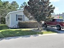 Homes for Sale in Walden Woods South, Homosassa, Florida $77,500