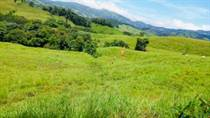 Farms and Acreages for Sale in Platanillo, Puntarenas $375,000