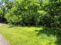 Lots and Land for Sale in Sleepy Creek, Berkeley Springs, West Virginia $155,000