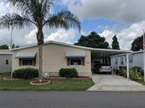 Homes Sold in Lake Pointe Village, Mulberry, Florida $43,500