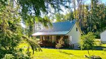 Homes for Sale in Nakusp, British Columbia $449,000