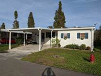 Homes for Sale in Lake Pointe Village, Mulberry, Florida $27,000
