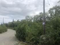 Homes for Sale in Portuguese Cove, Halifax, Nova Scotia $115,000