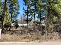 Lots and Land for Sale in Libby, Montana $22,000