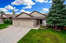 Homes for Sale in Park View Meadows, Centennial, Colorado $500,000