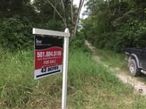 Lots and Land for Sale in San Ignacio, Cayo $109,000