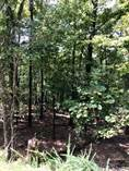 Lots and Land for Sale in Harbor South Lots, Mount Ida, Arkansas $170,000