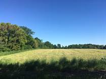 Lots and Land for Sale in Kemptville, Ontario $79,900