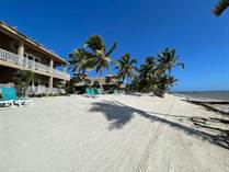 Condos for Sale in North Island Area, Ambergris Caye, Belize $349,000
