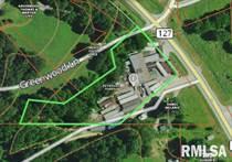 Commercial Real Estate for Sale in Jonesboro, Illinois $125,000