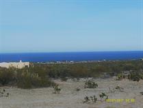 Homes for Sale in Palos Verde Norte, San Felipe, Baja California $9,000