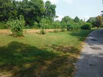 Lots and Land for Sale in Jonesboro, Illinois $77,500