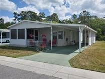 Homes for Sale in Forest Lake Estates, Zephyrhills, Florida $49,900