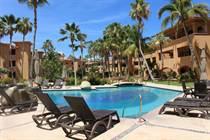 Condos for Rent/Lease in La Jolla, San Jose del Cabo, Baja California Sur $3,000 monthly