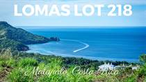 Lots and Land for Sale in Matapalo Beach , Guanacaste $119,000