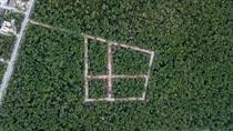 Lots and Land for Sale in Tulum, Quintana Roo $52,000