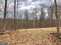 Lots and Land for Sale in West Virginia, HEDGESVILLE, West Virginia $35,000