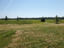 Lots and Land for Sale in Buck Lake, Alberta $60,000