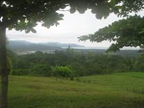 Lots and Land for Sale in Carara, Puntarenas $989,000