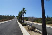 Lots and Land for Sale in Cabo Pacifica, Baja California Sur $69,000