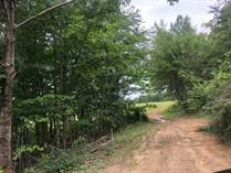 Lots and Land for Sale in Pikeville, Tennessee $170,000