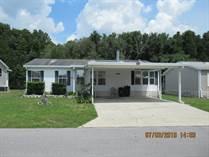 Homes for Sale in Sundance Mobile Home Park, Zephyrhills, Florida $35,000
