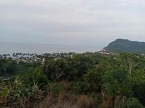 Lots and Land for Sale in Lo De Marcos, Nayarit $249,000