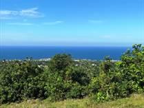 Lots and Land for Sale in Cabrera, Maria Trinidad Sanchez $260,000