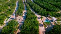 Lots and Land for Sale in Ciudad mayakoba, Quintana Roo $39,000