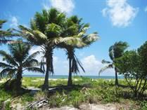 Lots and Land for Sale in Caye Caulker North, Caye Caulker, Belize $170,000